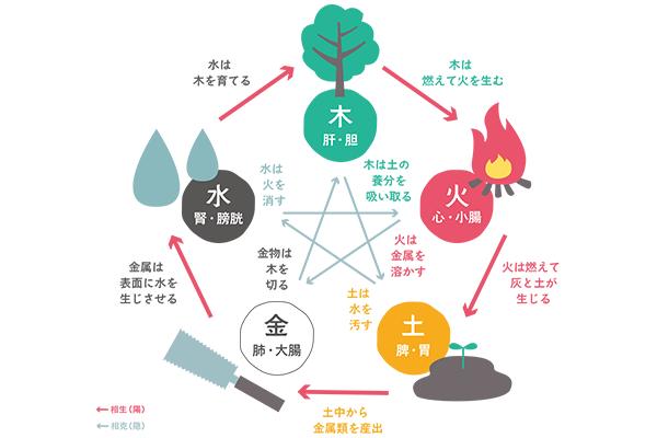 生命エネルギー(木火土金水)のバランス